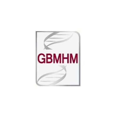 GBMHM